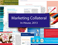 In-House: Marketing Collateral, 2013