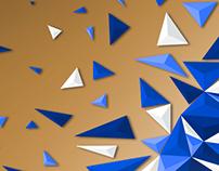 Geometricity 2014