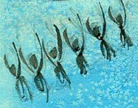 Sketches aquatic forms synchronized.