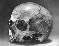 Skull Memoria