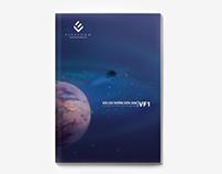 VFM Annual Report 2008