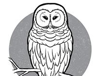 I am the night... owl