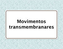 Movimentos Transmembranares // UI design & Animation