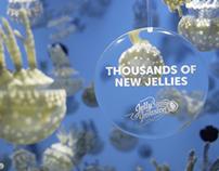 Vancouver Aquarium - Jellies TV