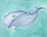Beluga What