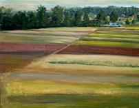 Fields.