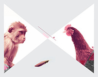 Chicken Monkey Branding