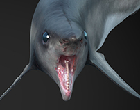 Helicoprion Texturing