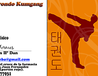 Taekwondo Business Card