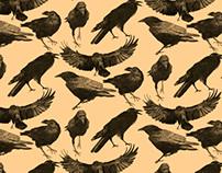Patterns. Black Animals.