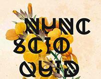 """""""Nunc scio quid sit amor"""" Poster Design"""