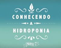 Conhecendo a Hidroponia - Parte 01