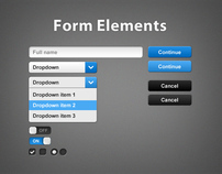 Custom Form Elements