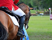 Florida Horse Park ~ 4/13/2014