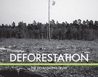Deforestation: Booklet & Web Design