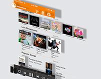 Grooveshark iOS Application