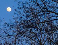 MAGYAN CREATIVE: Sun sets and moon rises