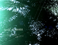 denial.of.service | reel