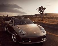 Desert Spyder
