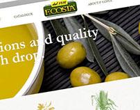 Fcosta webpage design.