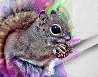 Sick Squirrel
