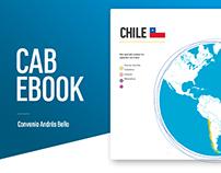 CAB - Informe Ejecutivo
