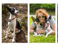Diptych and Triptych; Pets and their Owners