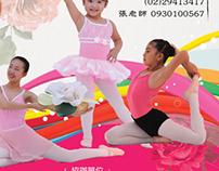 寶琪華風舞韻情 2013 (TW) | Poster