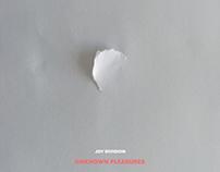 Joy Division - Unknown Pleasures Vinyl Cover Design