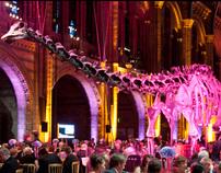 Event Photography - RLI Awards 2011, London