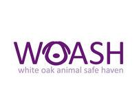 WOASH Rebranding