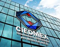 CIEDMEX Corporate Image
