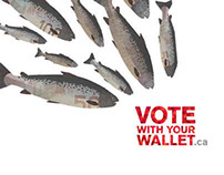 Vote With Your Wallet; Invest In Good Food