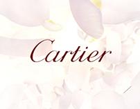Cartier - yahoo index banner
