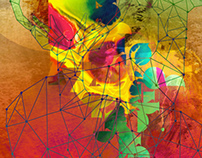 Meredith Monk / CD&VINYL