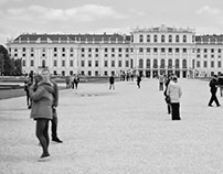 Wien erwartet Sie