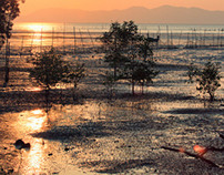 Krabi Bay, Thailand