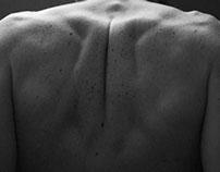 Bones/Skin