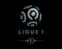 Ligue 1 & 2 Pro Football