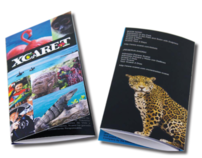 bilingual travel brochure