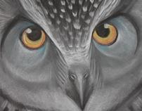 Owl - Soft Pastel