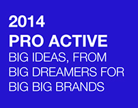 2014 PRO ACTIVE BIG IDEAS