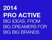 2014 PRO ACTIVE BIG IDEAS