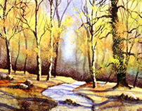 Autumn Woodland watercolour painting