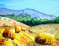 Fields Of Corn Harvested watercolour painting