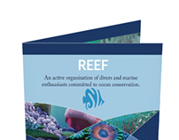 Publication: Newsletter for REEF