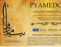 Pyamedost Website Layout