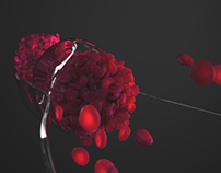 3d animated blood flow (V-Ray) - Windkessel effect