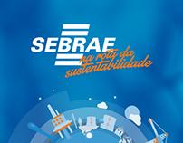 Sebrae - Presentation