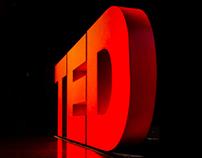TEDCity2.0 2013 Environmental Design